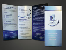 LDJ Cleaning Professionals | Brochure